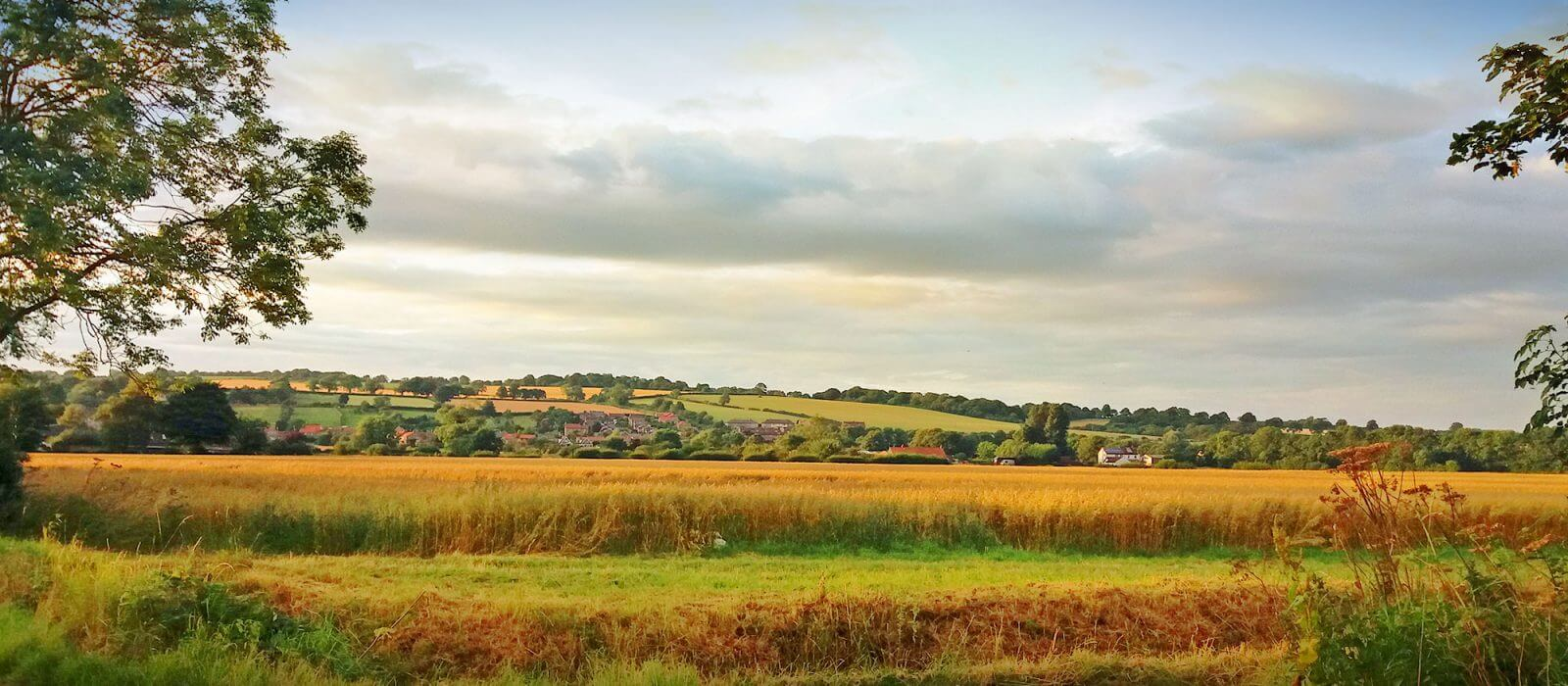 Farmland around Snainton, North Yorkshire